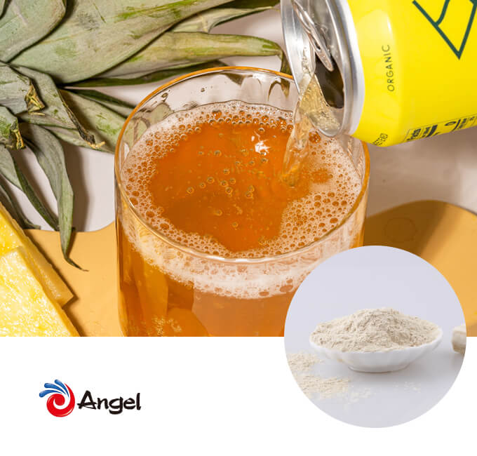 buy-Yeast-Protein-AnPro